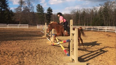 The Life of an Ordinary Equestrian