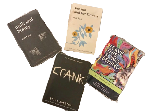 Books mentioned in the article