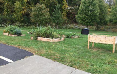 Garden Helps Growth of School Community